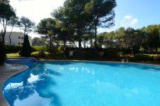 Ferienwohnung in Pals - PUIG SA GUILLA 2D DUPLEX